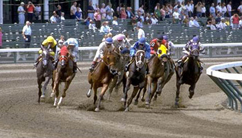 Triple Crown Horse Racing